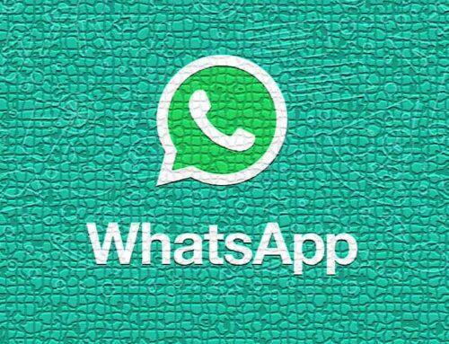 WhatsApp su iOS: i filtri per le foto, gli album fotografici e le risposte rapide
